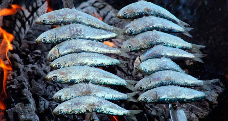Día del Pescaito en Torremolinos 2014
