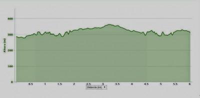 Perfil Carrera de las Aguas Istán 2015