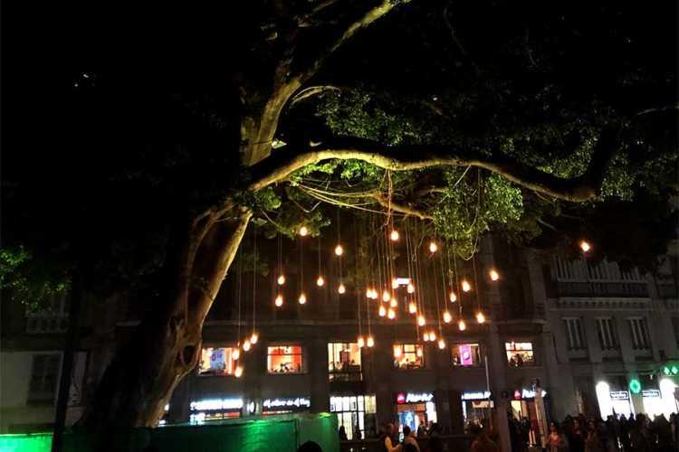 El Árbol Mágico en la Alameda