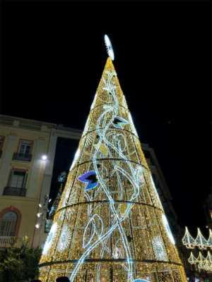 Árbol de Navidad en Plaza de la Constitución 2019